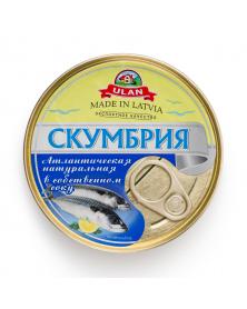 Makrele in eigenem Saft 240 g